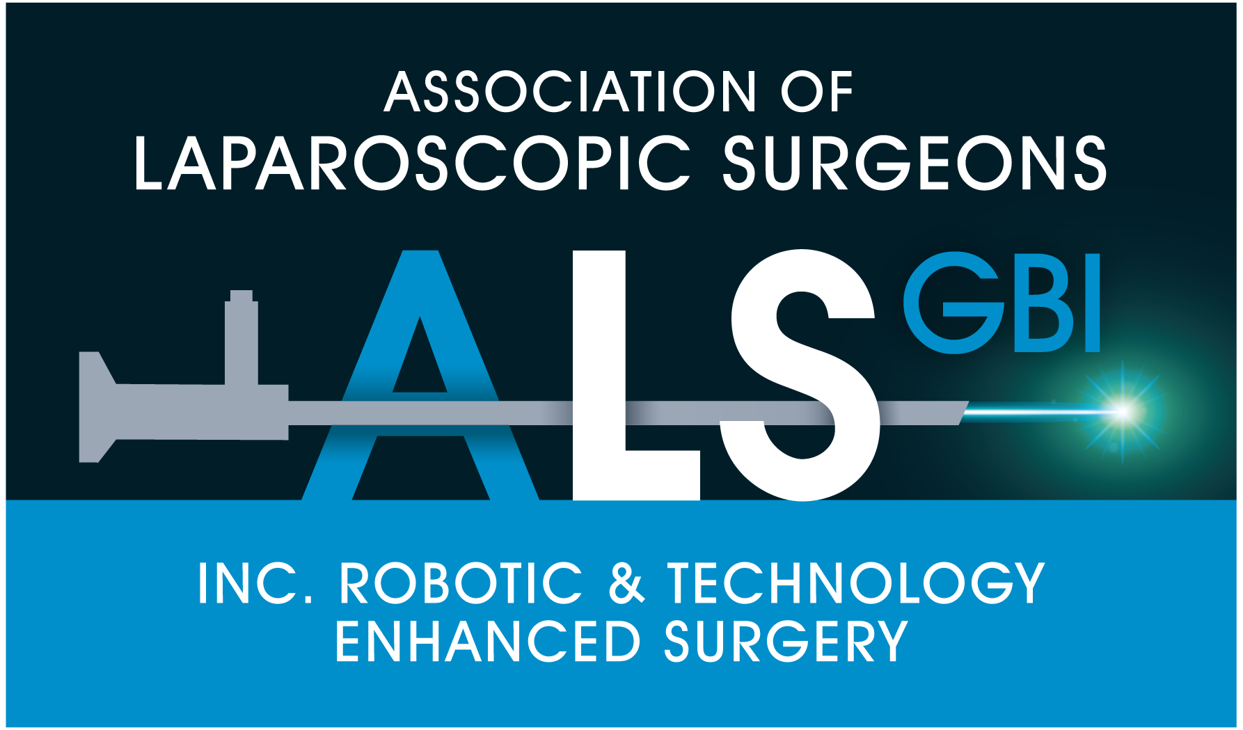 Alsgbi Professional Association In The Field Of Laparoscopic Surgery